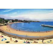 Pictures of Cullercoats (4)