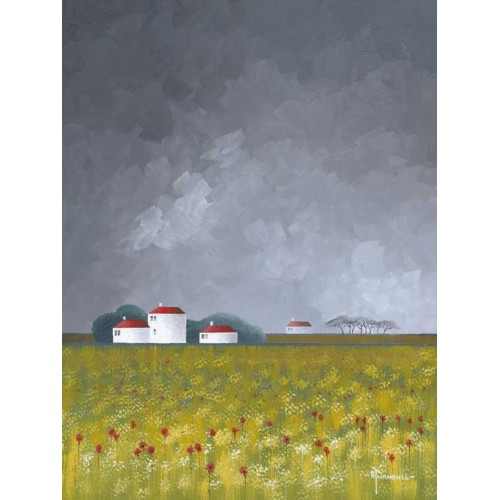 Dark Sky Poppy Fields