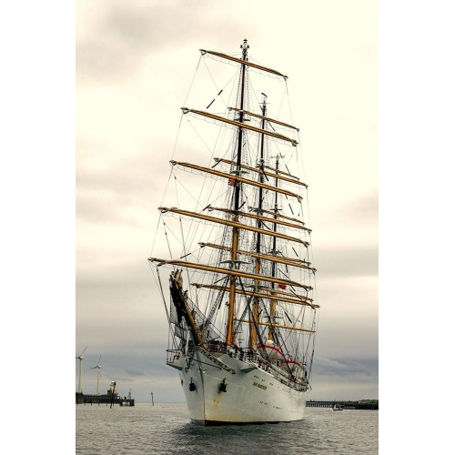 Tall Ships - Dar Mlodziezy off Blyth Harbour